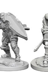 Dungeons & Dragons Nolzur`s Marvelous W3 Human Male Paladin