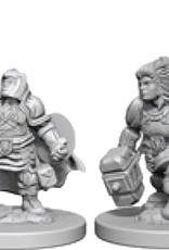Dungeons & Dragons Nolzur`s Dwarf Female Paladin