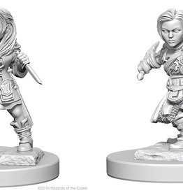 Dungeons & Dragons Nolzur`s Halfling Female Rogue