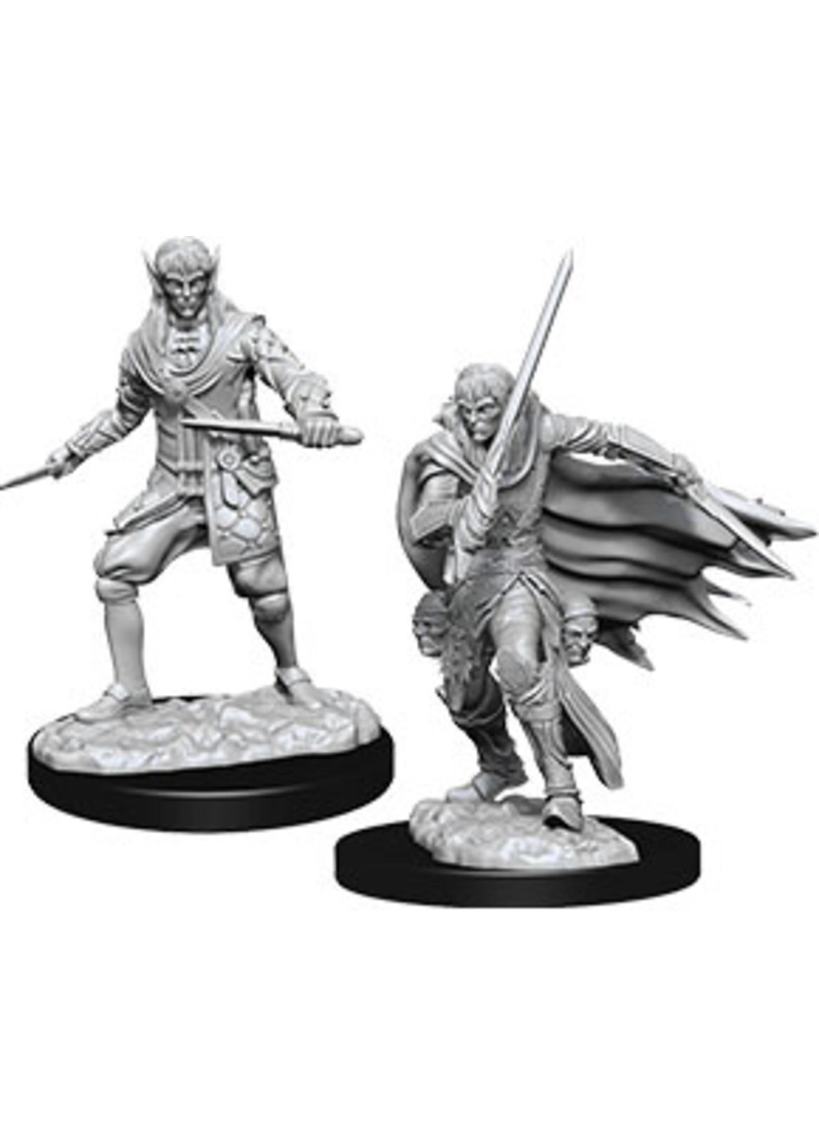 Pathfinder Deep Cuts Unpainted Miniatures: W10 Male Elf Rogue