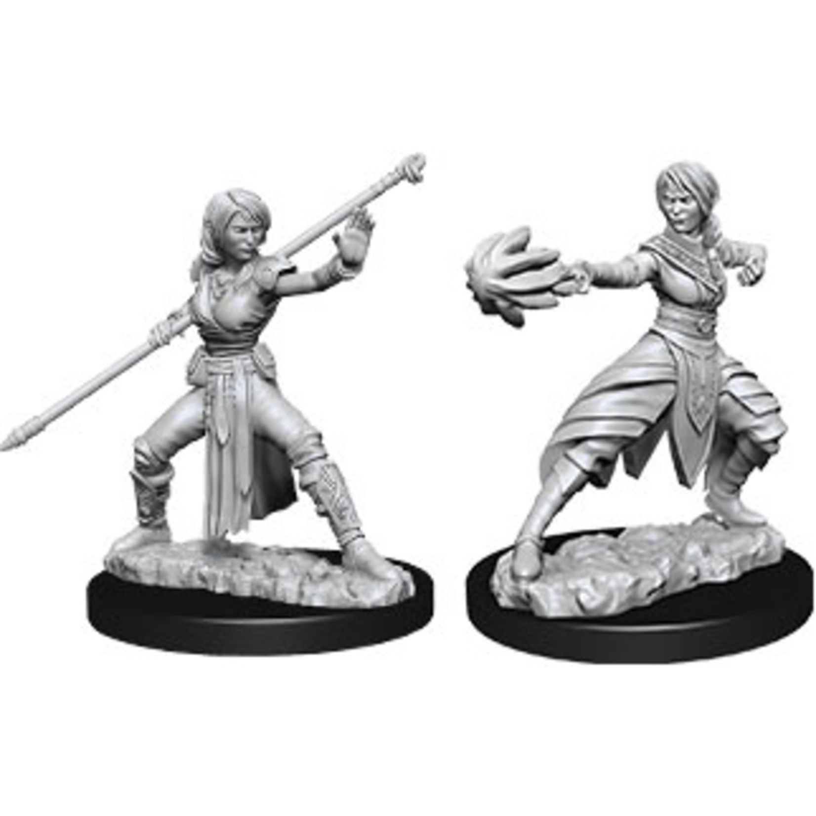 Dungeons & Dragons Nolzur`s Marvelous Unpainted Miniatures: W10 Female Half-Elf Monk