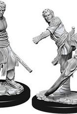 Dungeons & Dragons Nolzur`s Male Half-Elf Monk