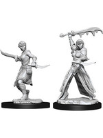 Dungeons & Dragons Nolzur`s Marvelous Female Human Rogue
