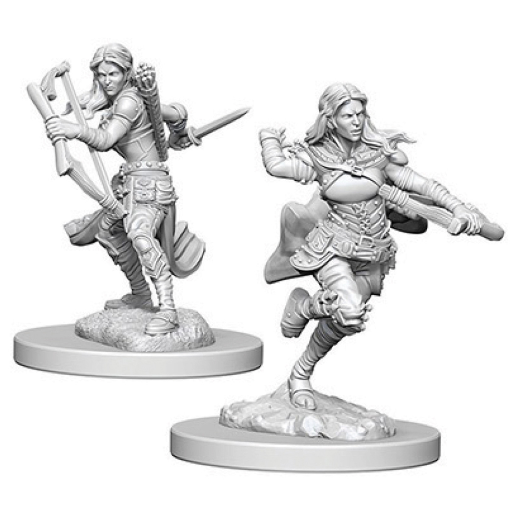 Dungeons & Dragons Nolzur`s Marvelous Air Genasi Female Rogue