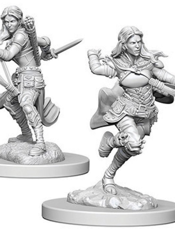 Dungeons & Dragons Nolzur`s Marvelous Air Genasi Female Rogue