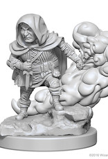 Dungeons & Dragons Nolzur`s W1 Halfling Male Rogue