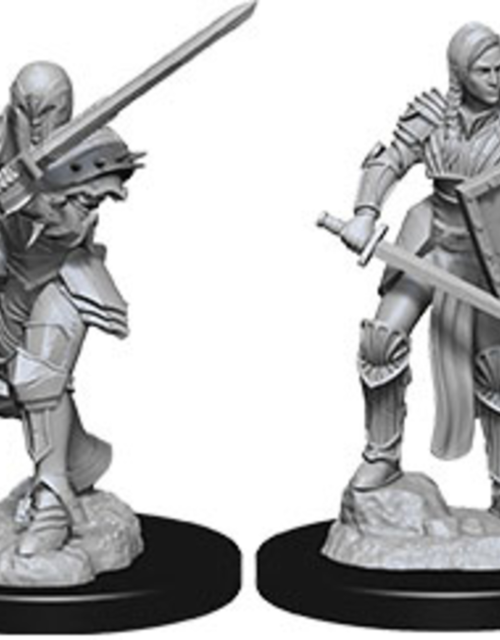 Dungeons & Dragons Nolzur`s Female Human Fighter