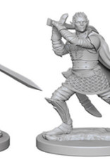 Pathfinder Deep Cuts Unpainted Miniatures: W2 Elf Male Paladin