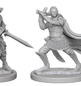 Pathfinder Deep Cuts Unpainted Miniatures: W2 Elf Male Paladin