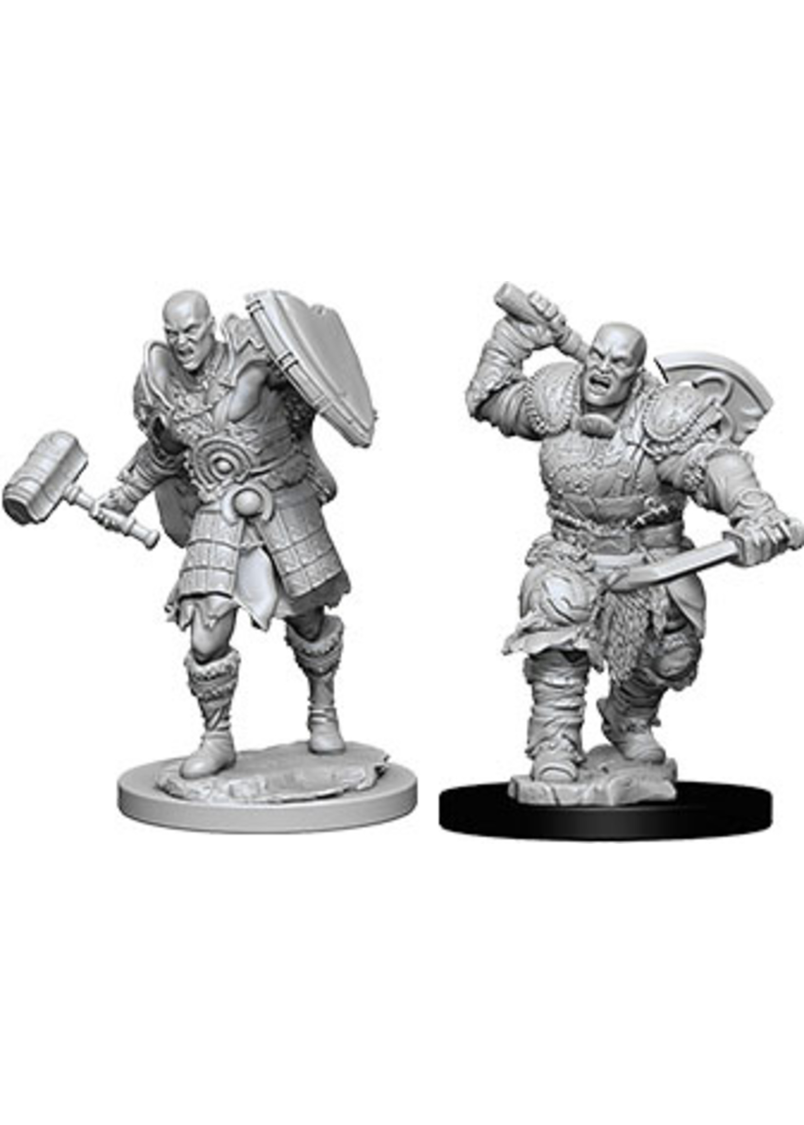 Dungeons & Dragons Nolzur`s Marvelous: Male Goliath Fighter