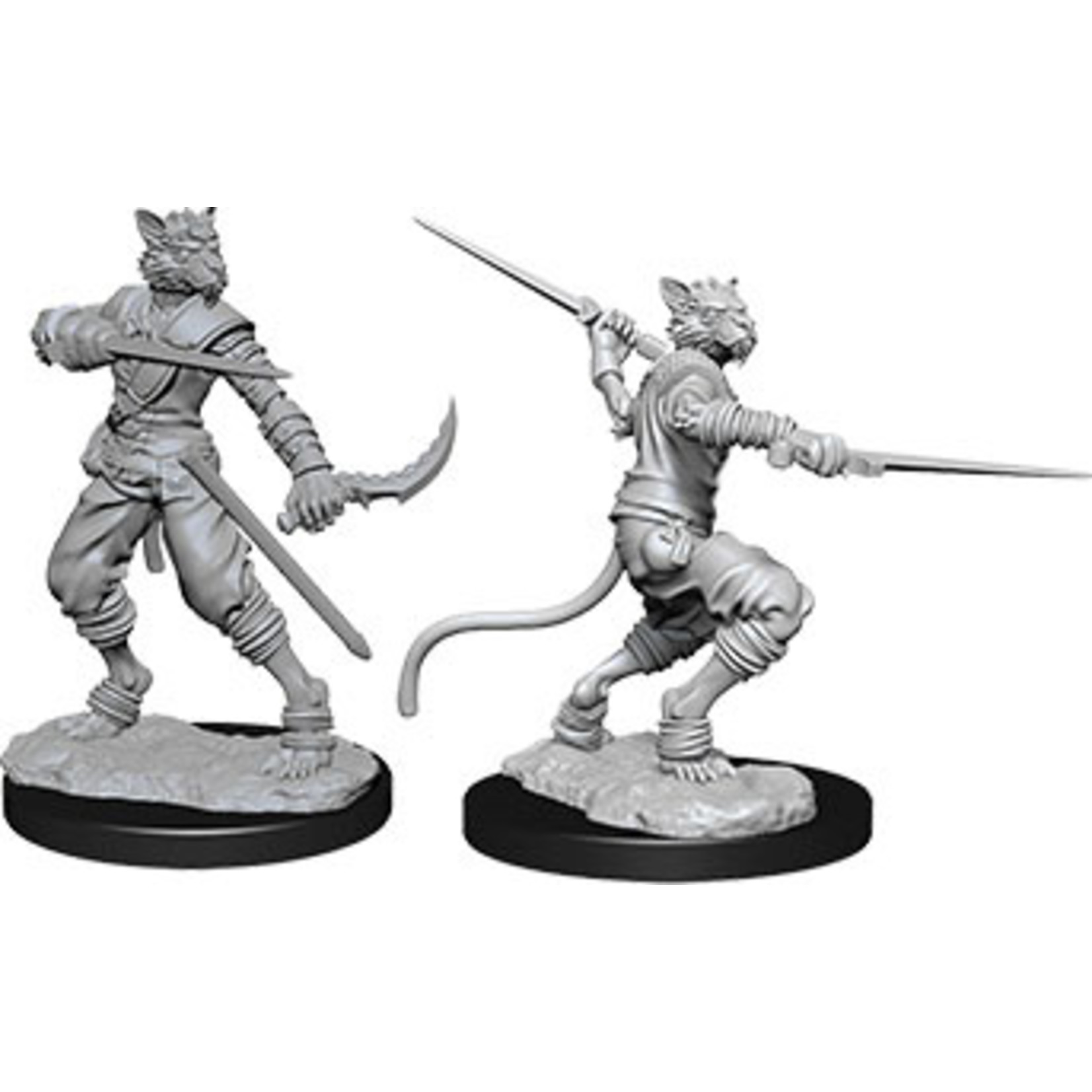 Dungeons & Dragons Nolzur`s W7 Tabaxi Male Rogue