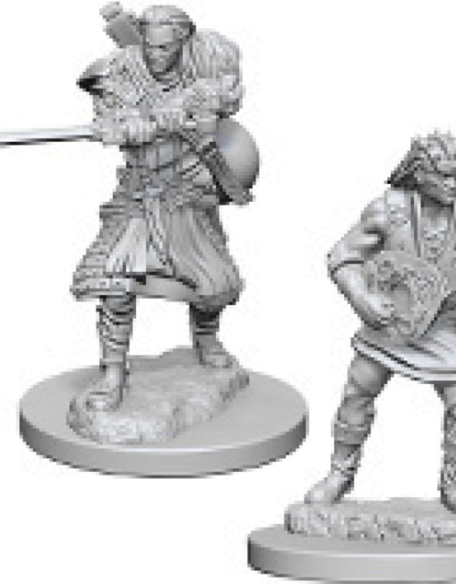 Dungeons & Dragons Nolzur`s Marvelous: Human Male Bard