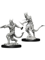 Dungeons & Dragons Nolzur`s W5 Tiefling Male Rogue