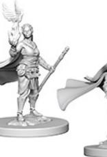 Dungeons & Dragons Nolzur`s Marvelous: Elf Female Druid