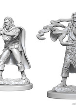 Dungeons & Dragons Nolzur`s Marvelous: Human Male Sorcerer