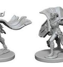 Pathfinder Deep Cuts Unpainted Miniatures: W1 Elf Female Paladin