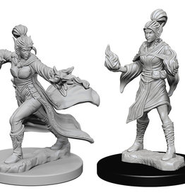 Pathfinder Deep Cuts Unpainted Miniatures: W1 Elf Female Sorcerer
