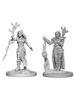 Dungeons & Dragons Nolzur`s W2: Human Female Druid