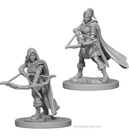 Dungeons & Dragons Nolzur`s W9: Human Female Ranger
