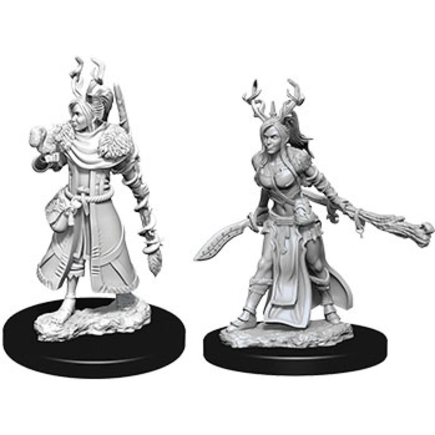 Dungeons & Dragons Nolzur`s W9 Female Human Druid
