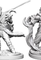 Dungeons & Dragons Nolzur`s W3 Human Male Druid