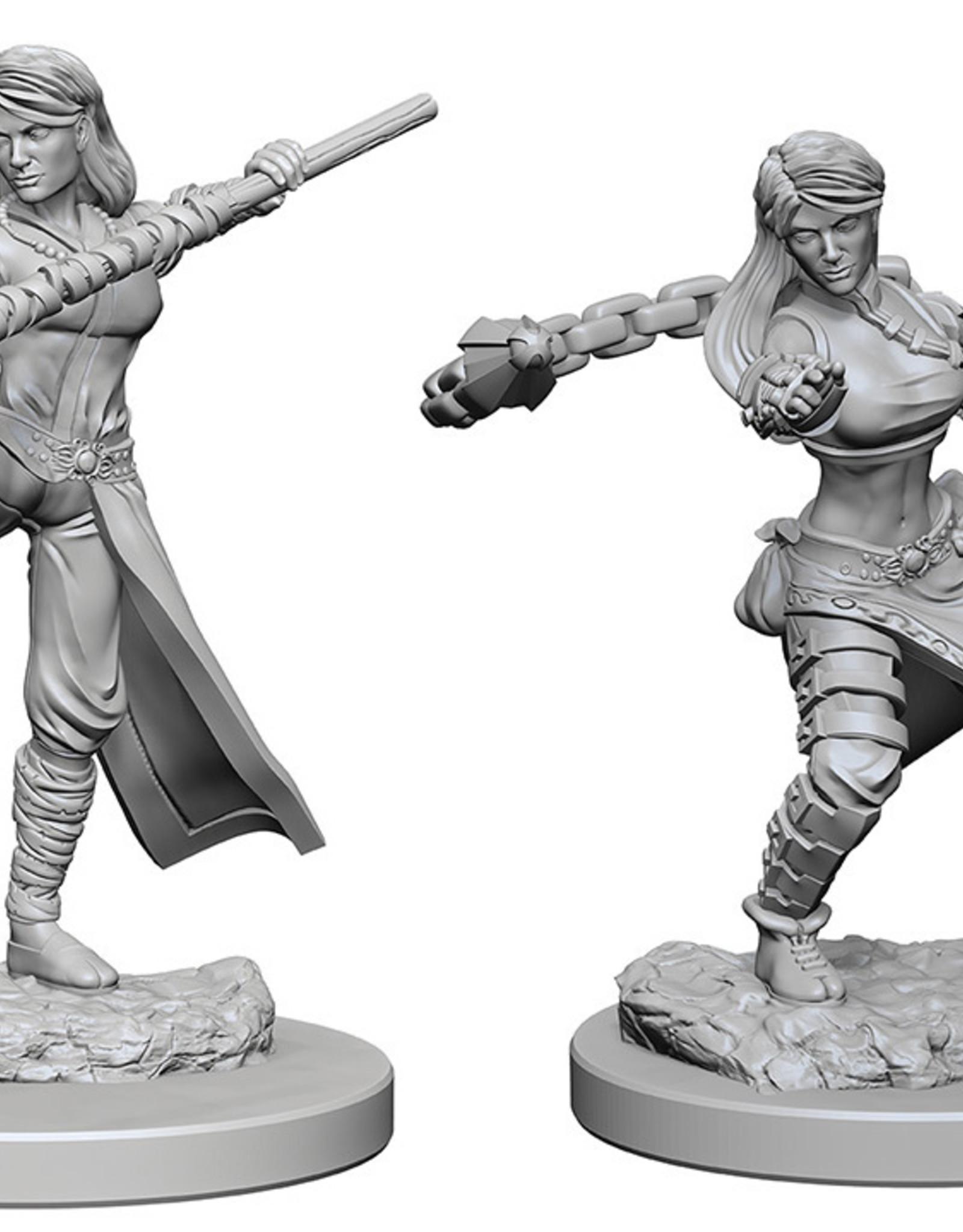 Dungeons & Dragons Nolzur`s W1 Human Female Monk