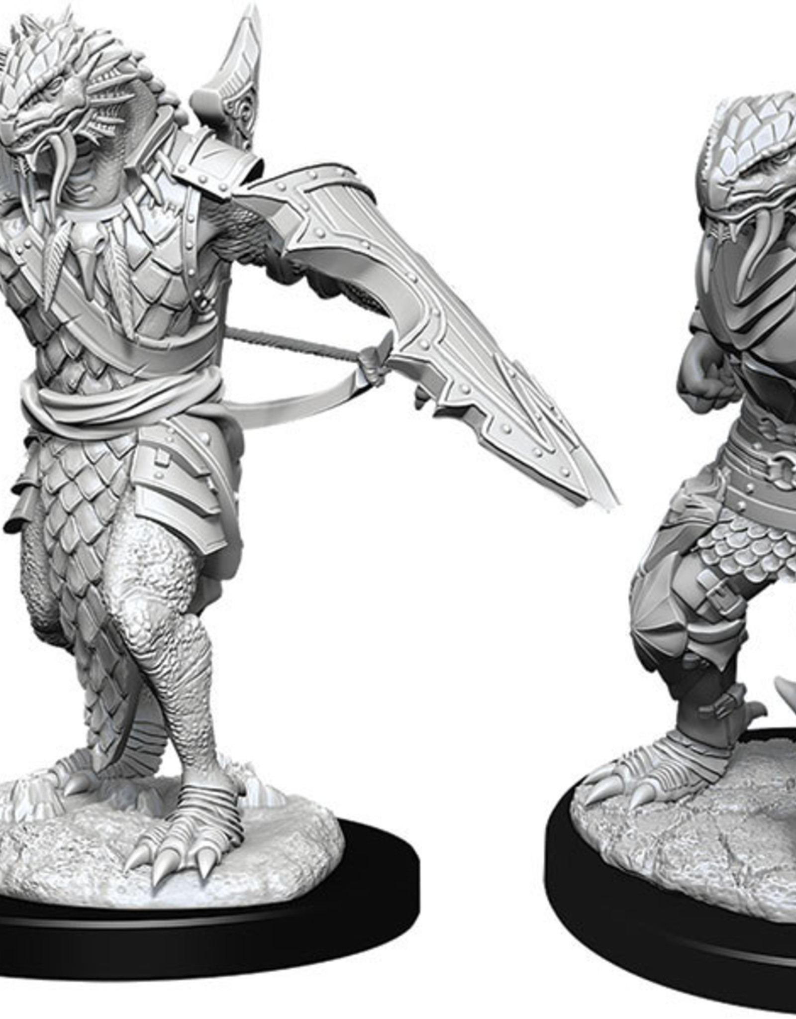 Dungeons & Dragons Nolzur`s Marvelous Unpainted Miniatures: W11 Male Dragonborn Paladin