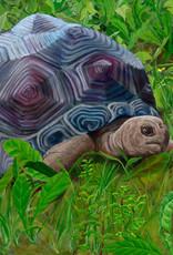 Slow & Steady Oil Original by Robin Kinney