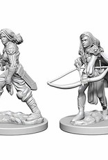 Pathfinder Deep Cuts Unpainted Miniatures: W1 Human Female Fighter
