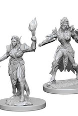 Pathfinder Deep Cuts Unpainted Miniatures: W1 Elf Female Fighter