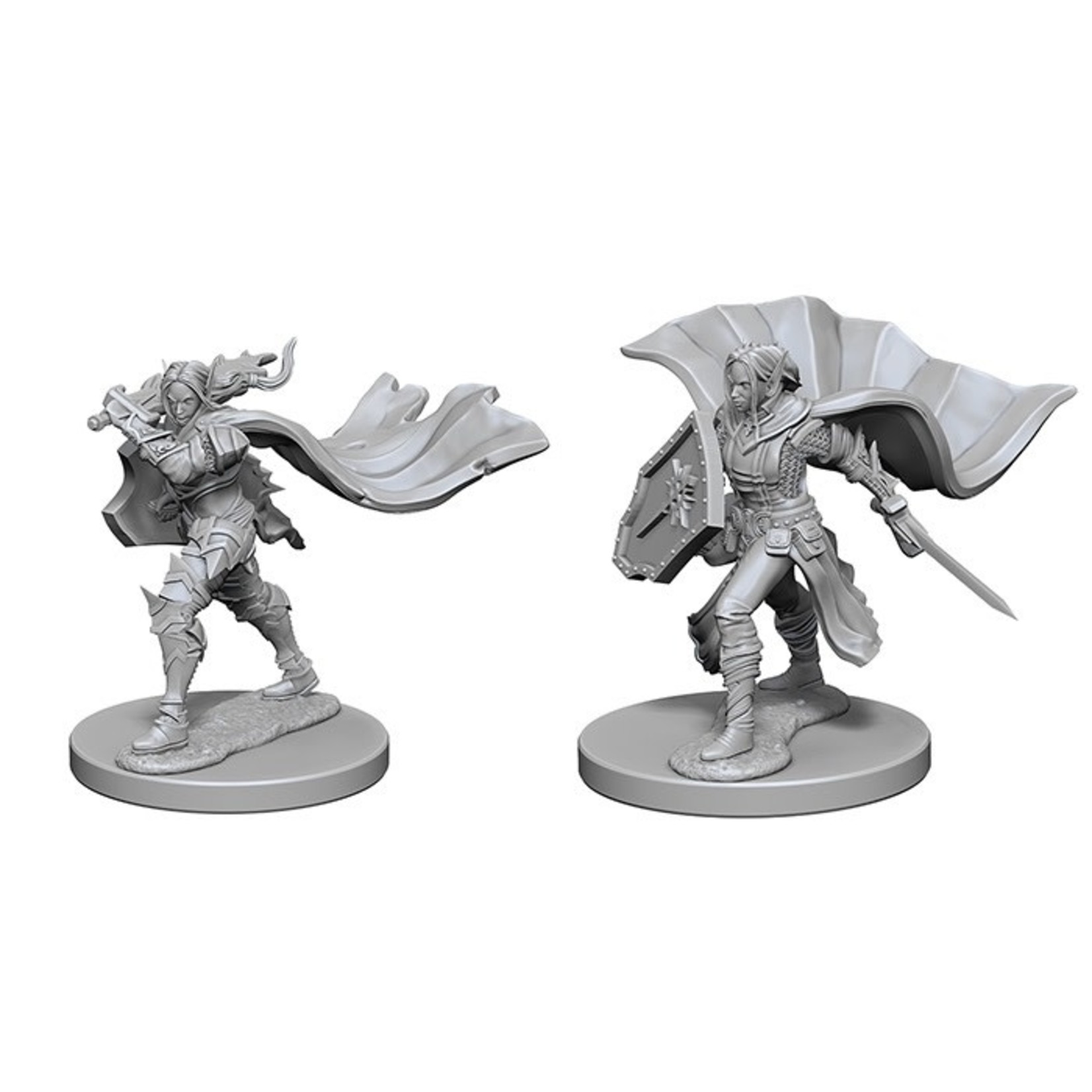 Pathfinder Deep Cuts Unpainted Miniatures: W1 Elf Female Paladin