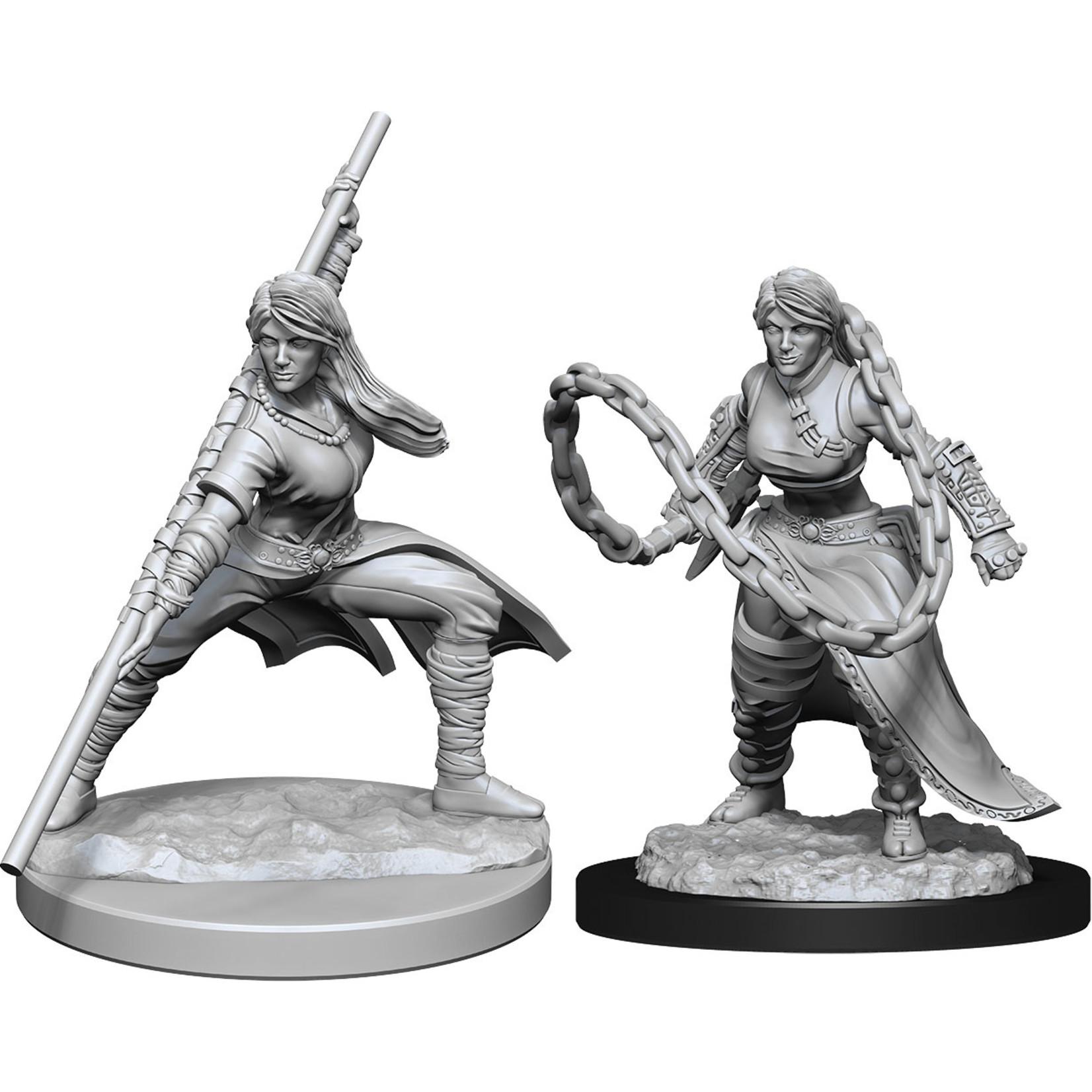Dungeons & Dragons Nolzur`s Marvelous Unpainted Miniatures: W14 Human Monk Female