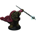 Tortle Male Monk Dungeons & Dragons Fantasy Miniatures: Icons of the Realms Premium Figures W3