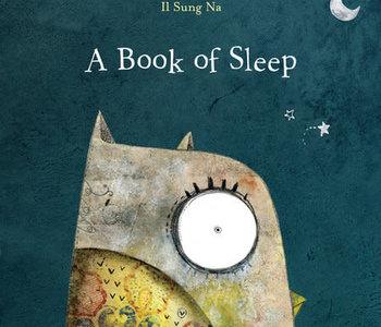 A Book of Sleep Board Book