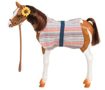 Our Generation Pinto Paso Fino Foal