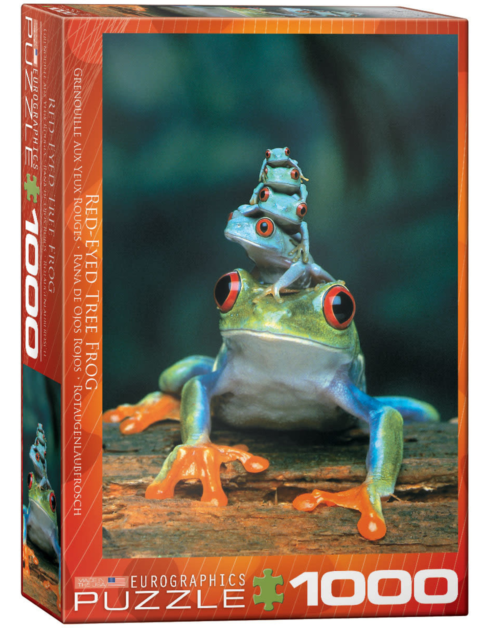 Eurographics Red Eyed Tree Frog 1000pc Puzzle