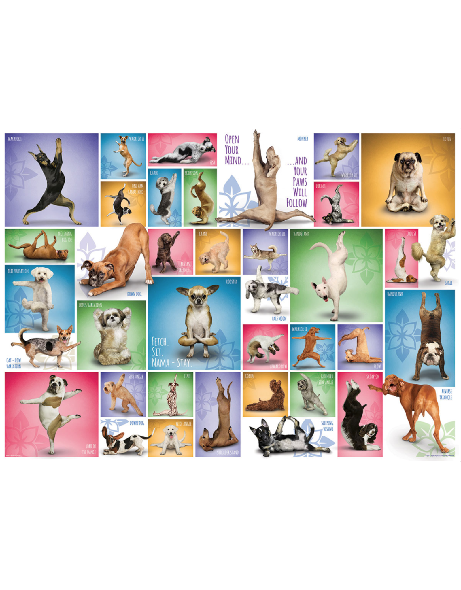Eurographics Yoga Dogs 1000pc Puzzle