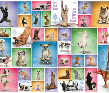 Yoga Dogs 1000pc Puzzle