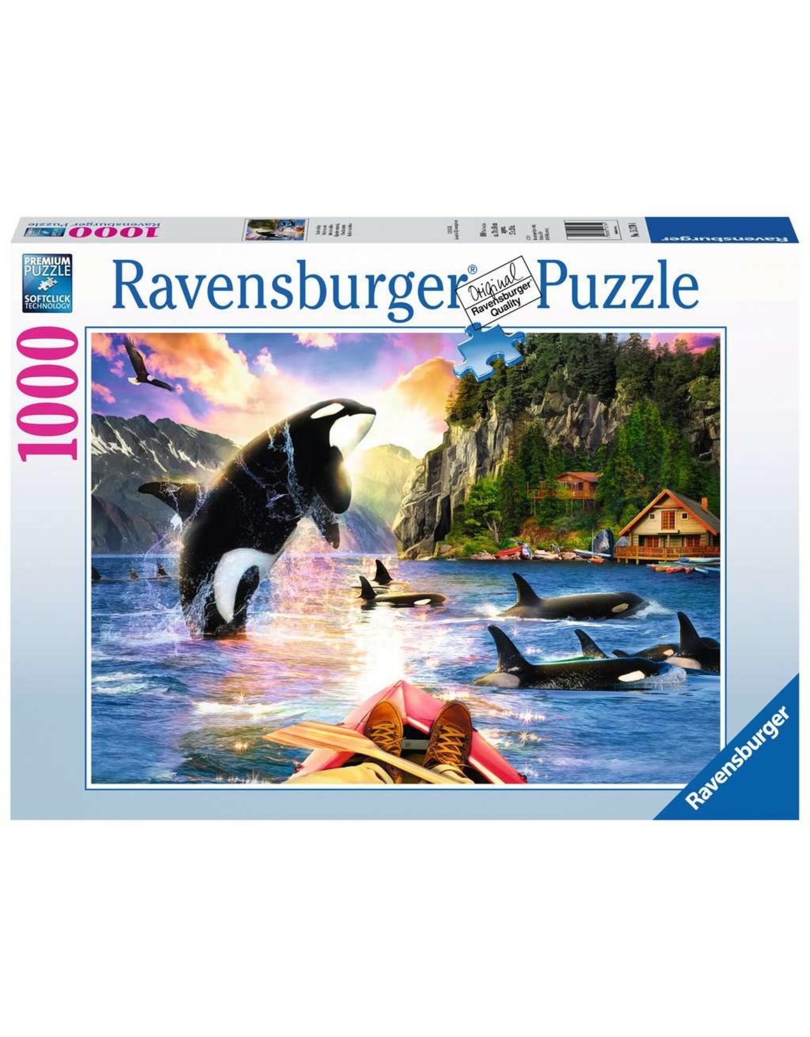 Ravensburger Close Encounters 1000pc Puzzle