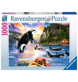 Ravensburger Close Encounters 1000pc Puzzle