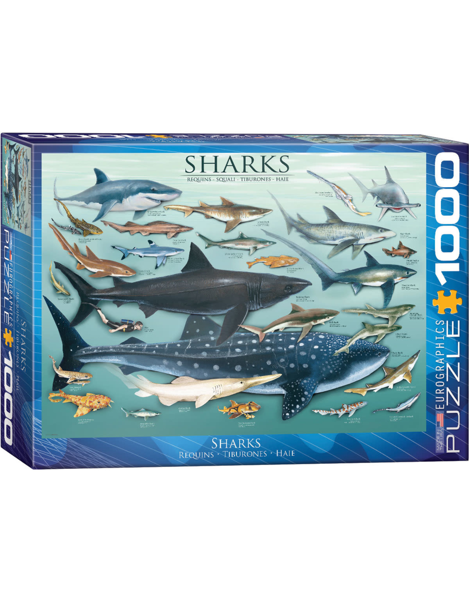Eurographics Sharks 1000pc Puzzle