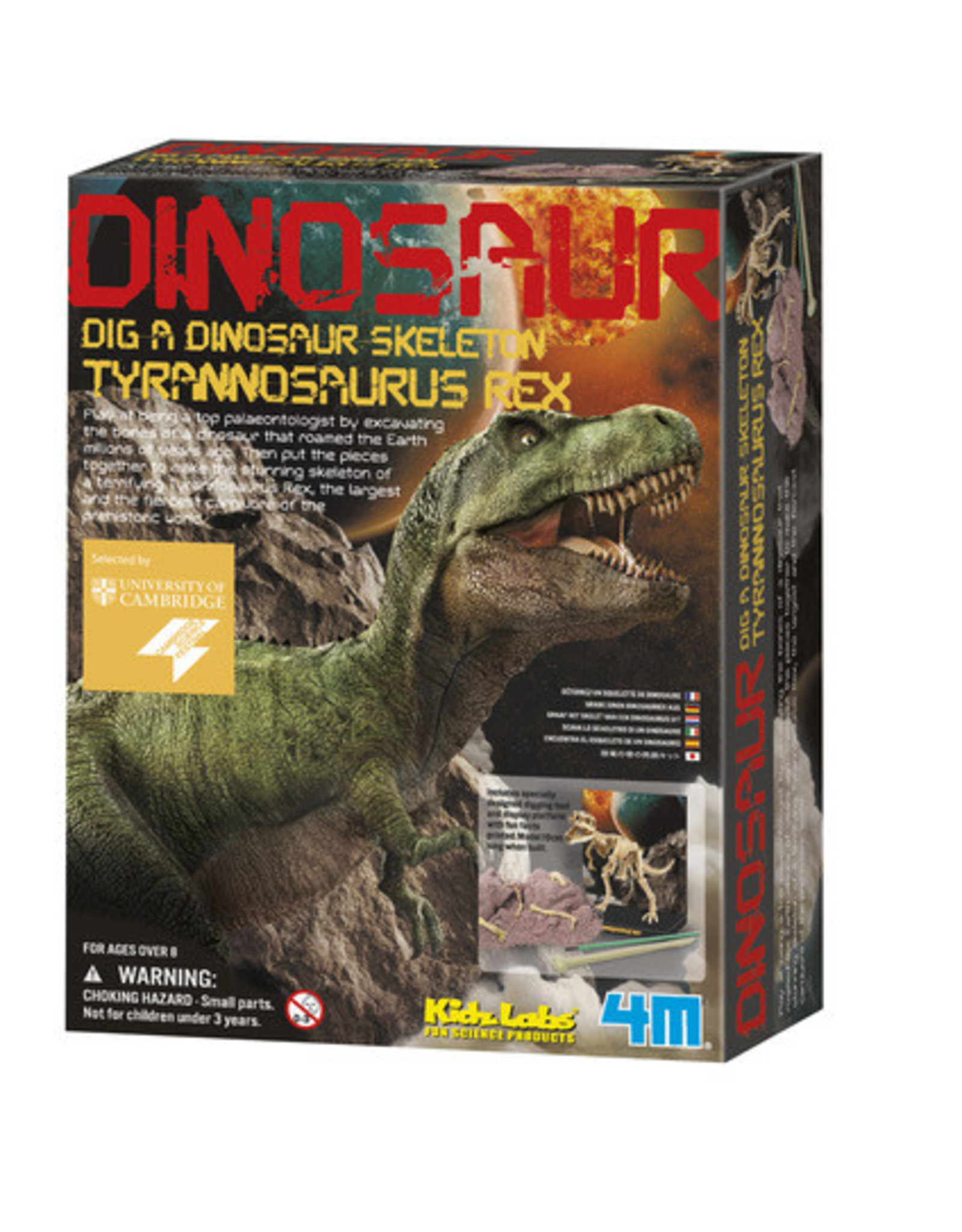 4M Dig a Dino Tyrannosaurus