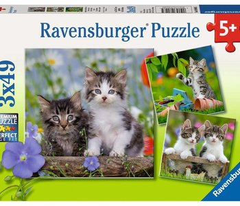 Tiger Kittens 3x49pc Puzzles