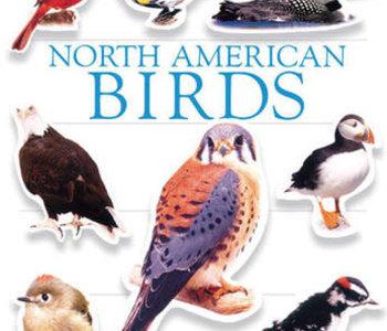 North American Birds Ultimate Sticker Book
