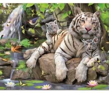 White Tigers of Bengal 1000pc Puzzle