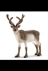 Schleich® Reindeer