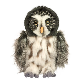 Douglas Darius Great Grey Owl
