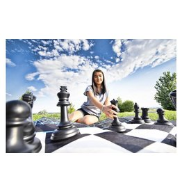 4FUN 2in1 Jumbo Chess and Checkers Set