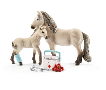 Hannah's First Aid Kit for Icelandic Horses