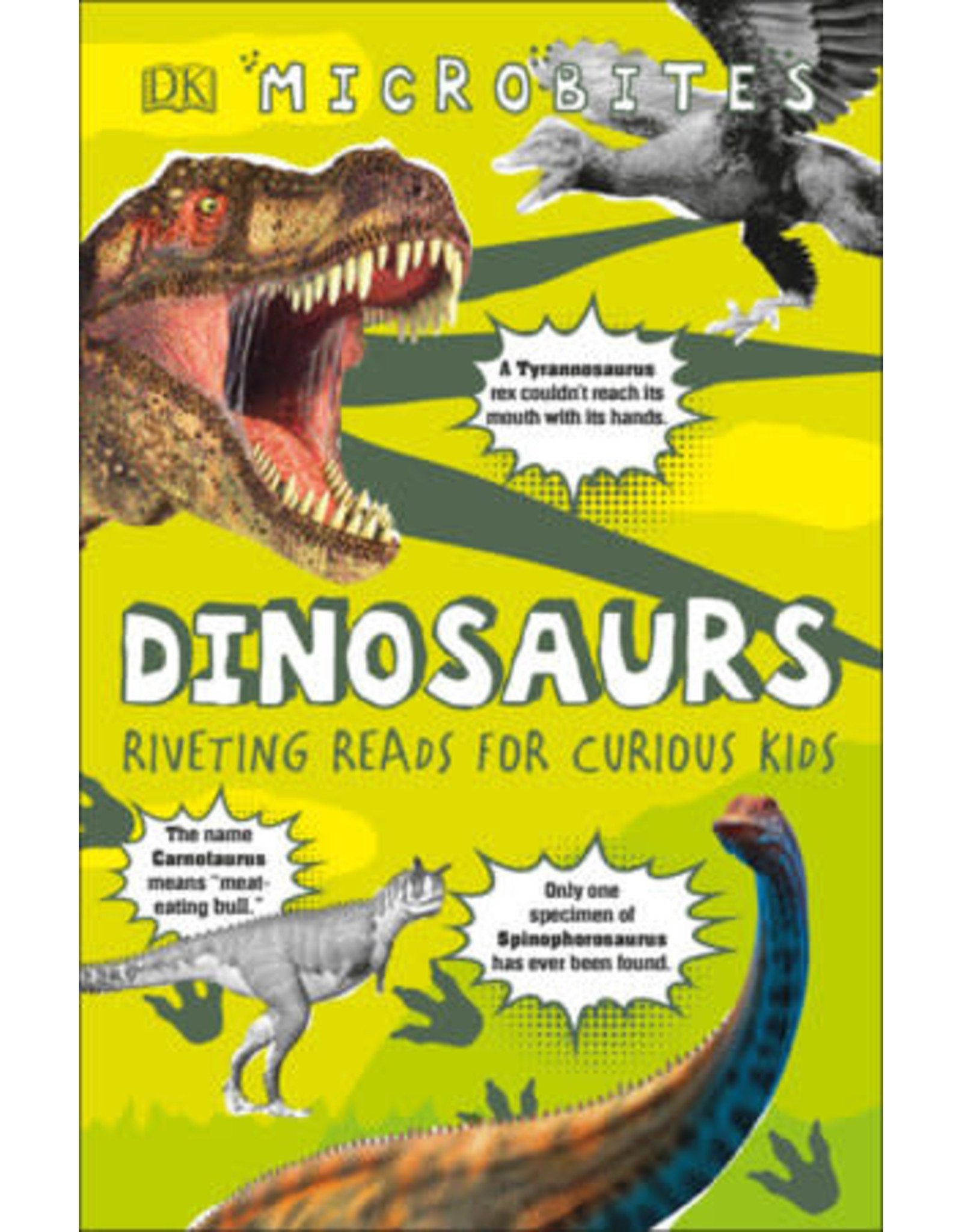 DK Microbites: Dinosaurs
